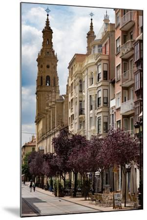 Calle Portales with Santa Maria De La Redonda Cathedral in Logrono, La Rioja, Spain, Europe-Martin Child-Mounted Photographic Print