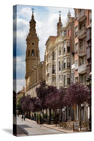Calle Portales with Santa Maria De La Redonda Cathedral in Logrono, La Rioja, Spain, Europe-Martin Child-Stretched Canvas Print