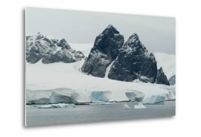 Cuverville Island, Antarctica-Natalie Tepper-Metal Print