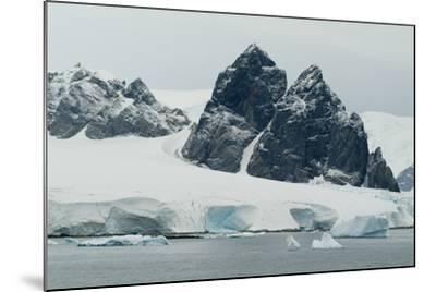 Cuverville Island, Antarctica-Natalie Tepper-Mounted Photo