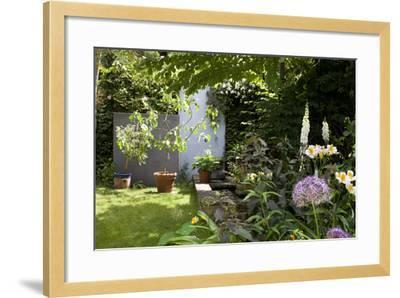 Suburban Garden Detail, Kingston Upon Thames, England, UK-Richard Bryant-Framed Photo