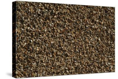 Close Up of a Pebble-Dashed Wall-Natalie Tepper-Stretched Canvas Print