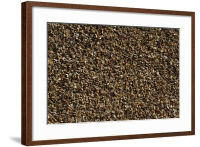 Close Up of a Pebble-Dashed Wall-Natalie Tepper-Framed Photo