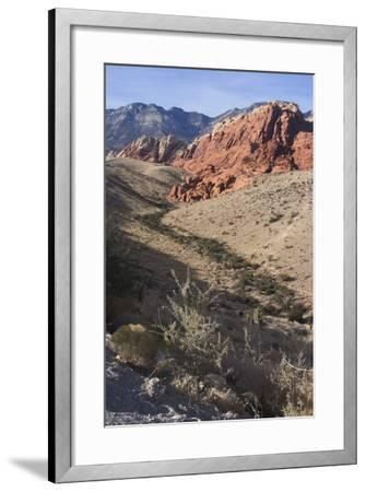 Red Rock National Conservation Area, Las Vegas, Nevada, United States-Natalie Tepper-Framed Photo