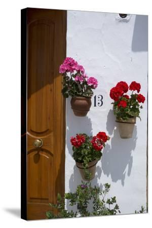 Decorative Geranium Flowers in Pots on the Walls-Natalie Tepper-Stretched Canvas Print