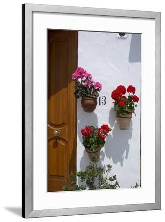 Decorative Geranium Flowers in Pots on the Walls-Natalie Tepper-Framed Photo