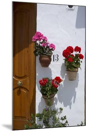 Decorative Geranium Flowers in Pots on the Walls-Natalie Tepper-Mounted Photo