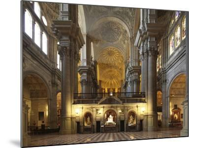 The Cathedral of Mßlaga Is a Renaissance Church in City of Mßlaga in Andalusia in Southern Spain-David Bank-Mounted Photographic Print