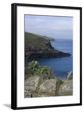 Stone Wall Overlooking the Harbour, Port Isaac, Cornwall, UK-Natalie Tepper-Framed Photo