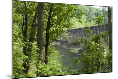 Cumberland Falls, Kentucky-Natalie Tepper-Mounted Photo