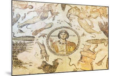 Turkey, Eastern Anatolia, Hatay, Mosaic Museum; Yakto Mosaic-Christian Kober-Mounted Photographic Print