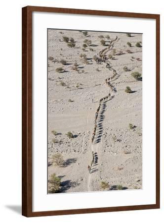 Ethiopia, Hamed Ela-Nigel Pavitt-Framed Photographic Print