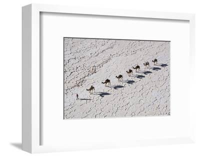 Ethiopia, Assale-Nigel Pavitt-Framed Photographic Print