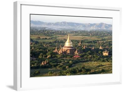 The Golden Stupa of Dhammayazika Pagoda Amongst Some Other Terracotta Buddhist Temples in Bagan-Annie Owen-Framed Photographic Print