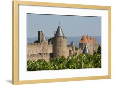 The Medieval Walled Town of Carcassonne, Languedoc-Roussillon, France, Europe-Martin Child-Framed Photographic Print
