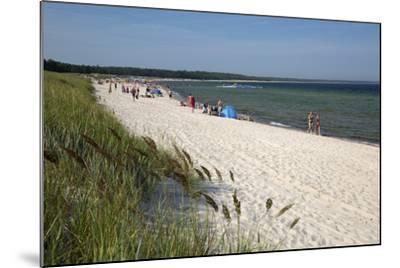 Lyckesand Beach Backed by Sand Dunes, Baltic Coast-Stuart Black-Mounted Photographic Print