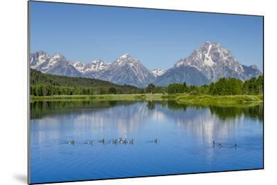 Small Lake in Grand Teton National Park, Wyoming, United States of America, North America-Michael DeFreitas-Mounted Photographic Print