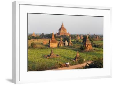 Traditional Horse and Cart Passing the Pagodas in Bagan (Pagan), Myanmar (Burma), Asia-Jordan Banks-Framed Photographic Print