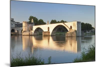 Bridge St. Benezet over Rhone River, Provence-Alpes-Cote D'Azur-Markus Lange-Mounted Photographic Print