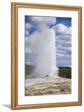 Old Faithful Geyser, Upper Geyser Basin, Yellowstone National Park, Wyoming, U.S.A.-Gary Cook-Framed Photographic Print