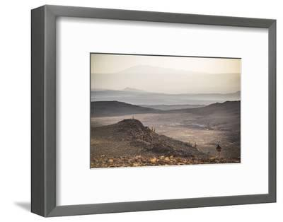 Trekking at Sunset in Cactus Valley (Los Cardones Ravine), Atacama Desert, North Chile-Matthew Williams-Ellis-Framed Photographic Print