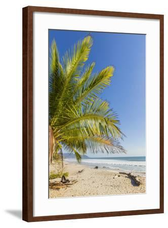 Palm Trees on This Beautiful Surf Beach Near Mal Pais, Santa Teresa, Costa Rica-Rob Francis-Framed Photographic Print