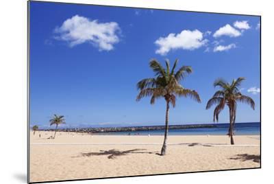 Playa De Las Teresitas Beach, San Andres, Tenerife, Canary Islands, Spain, Europe-Markus Lange-Mounted Photographic Print