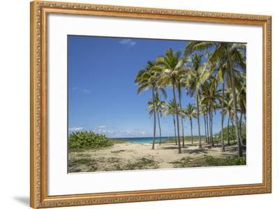Playa De L'Este, Havana, Cuba, West Indies, Caribbean, Central America-Angelo Cavalli-Framed Photographic Print