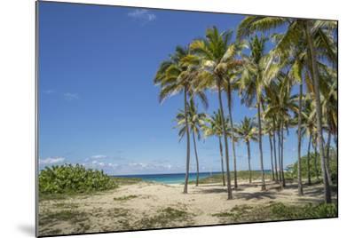 Playa De L'Este, Havana, Cuba, West Indies, Caribbean, Central America-Angelo Cavalli-Mounted Photographic Print