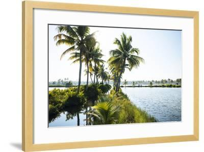 Backwaters Near North Paravoor, Kerala, India, South Asia-Ben Pipe-Framed Photographic Print