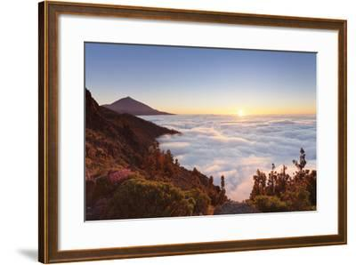 Pico Del Teide at Sunset, National Park Teide, Tenerife, Canary Islands, Spain-Markus Lange-Framed Photographic Print