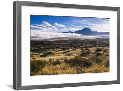 Sincholagua Volcano at Sunrise, Cotopaxi Province, Ecuador, South America-Matthew Williams-Ellis-Framed Photographic Print