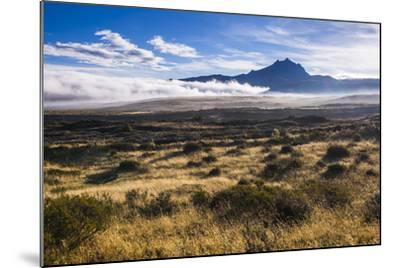 Sincholagua Volcano at Sunrise, Cotopaxi Province, Ecuador, South America-Matthew Williams-Ellis-Mounted Photographic Print
