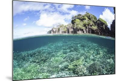 A Beautiful Coral Reef Grows Near a Set of Limestone Islands in Indonesia-Stocktrek Images-Mounted Photographic Print