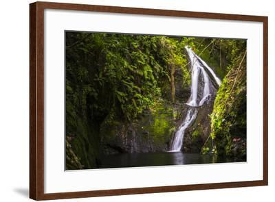 Wigmore's Waterfall, Rarotonga, Cook Islands, South Pacific, Pacific-Matthew Williams-Ellis-Framed Photographic Print