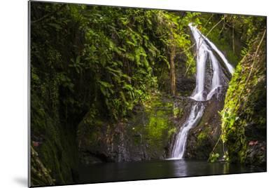 Wigmore's Waterfall, Rarotonga, Cook Islands, South Pacific, Pacific-Matthew Williams-Ellis-Mounted Photographic Print