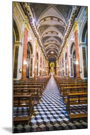 Inside Salta Cathedral, Salta, Salta Province, North Argentina, Argentina, South America-Matthew Williams-Ellis-Mounted Photographic Print