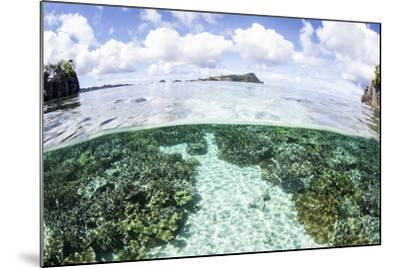 A Beautiful Coral Reef Grows Near a Set of Limestone Islands-Stocktrek Images-Mounted Photographic Print