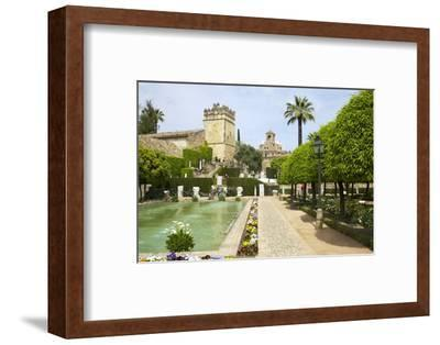 Gardens in Alcazar, Cordoba, Andalucia, Spain, Europe-Peter Barritt-Framed Photographic Print