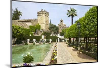 Gardens in Alcazar, Cordoba, Andalucia, Spain, Europe-Peter Barritt-Mounted Photographic Print