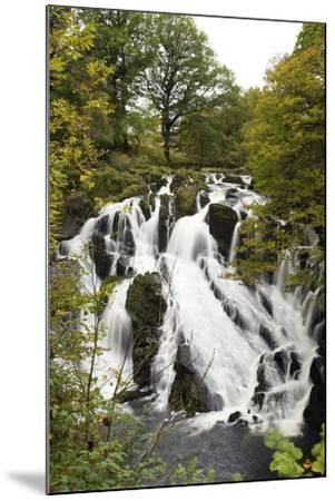 Swallow Falls in Autumn, Near Betwys-Y-Coed, on River Llugwy, Conwy, Wales, United Kingdom, Europe-Peter Barritt-Mounted Photographic Print