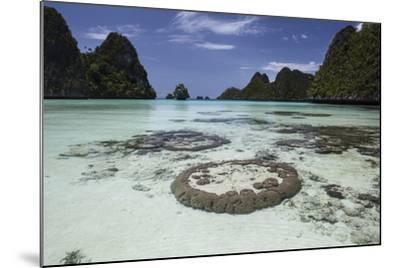 Limestone Islands Surround Corals in a Lagoon in Raja Ampat-Stocktrek Images-Mounted Photographic Print