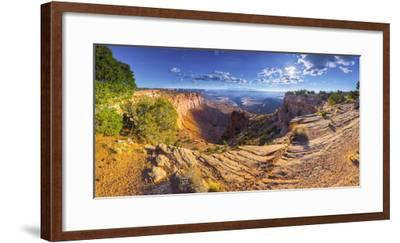 Usa, Utah, Canyonlands National Park, Island in the Sky District, Buck Canyon Overlook-Alan Copson-Framed Photographic Print