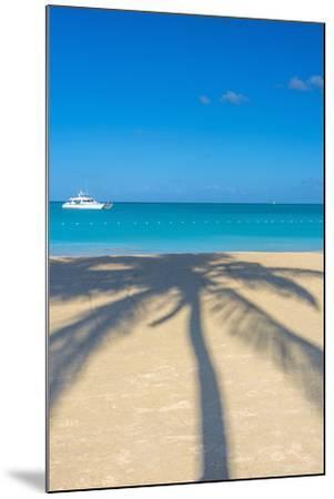 Antigua, Jolly Bay Beach, Palm Trees Casting Shadows-Alan Copson-Mounted Photographic Print