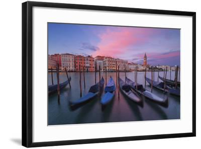 Gondolas at Dorsoduro, Venice, Veneto, Italy. in the Background the St. Mark's Bell Tower-ClickAlps-Framed Photographic Print