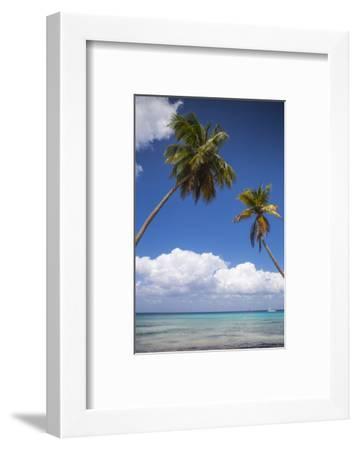 Dominican Republic, Punta Cana, Parque Nacional Del Este, Saona Island, Catuano Beach-Jane Sweeney-Framed Photographic Print