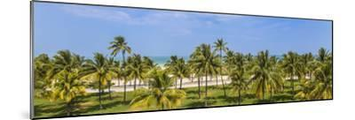 U.S.A, Miami, Miami Beach, South Beach, Ocean Drive, View over Lummus Park Towards South Beach-Jane Sweeney-Mounted Photographic Print