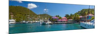 Caribbean, British Virgin Islands, Tortola, Sopers Hole-Alan Copson-Mounted Photographic Print