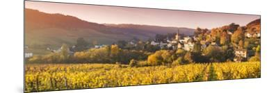 Pernand-Vergelesses and its Vineyards, Cote D'Or, Burgundy, France-Matteo Colombo-Mounted Photographic Print