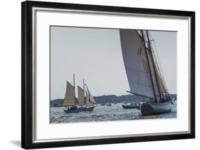 USA, Massachusetts, Cape Ann, Gloucester, America's Oldest Seaport, Annual Schooner Festival-Walter Bibikow-Framed Photographic Print